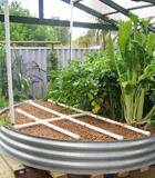 Aquaponics: the most water efficient way to grow your veggies