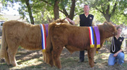 Local Breeders Show Southern Success Story