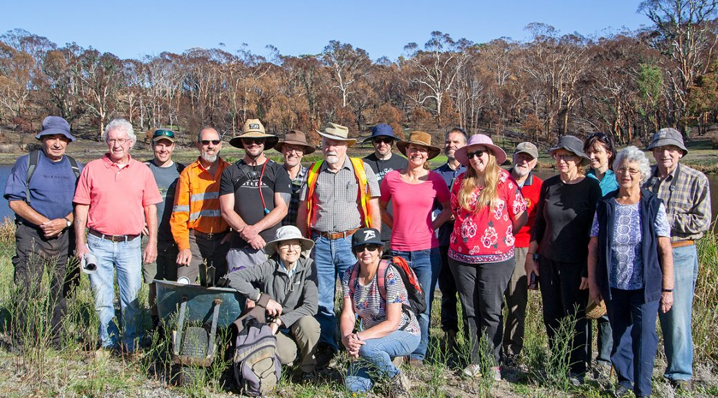 Lobethal-Bushland-Park-Friends-group-Along-the-Grapevine