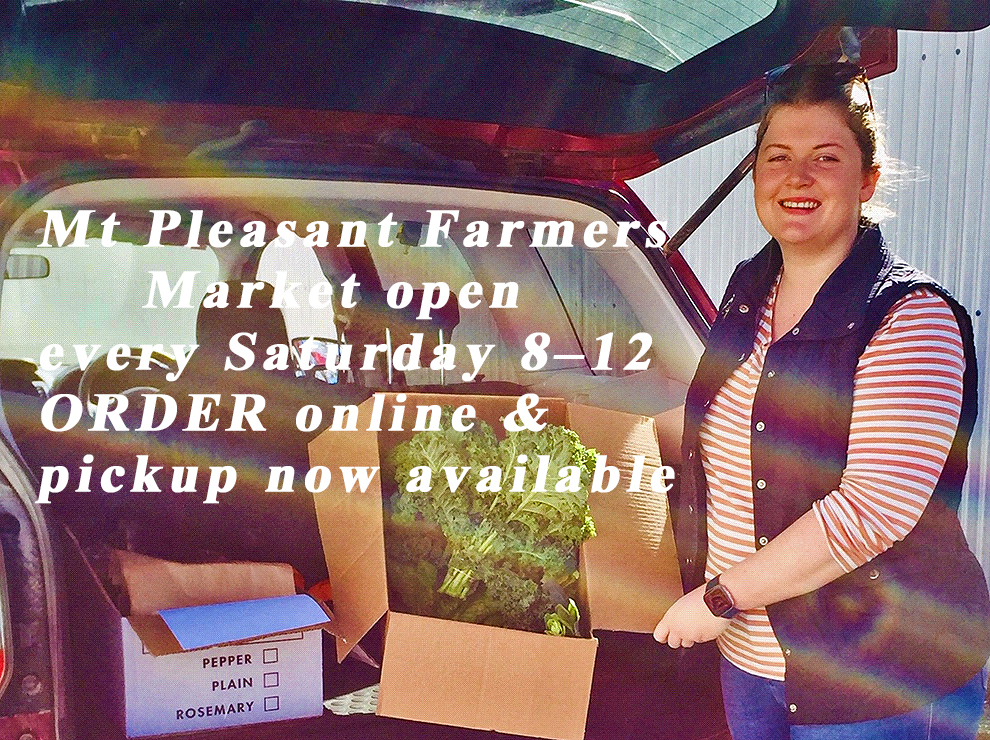 Mount Pleasant Farmers Market is still open during COVID19 read Along The Grapevine for more