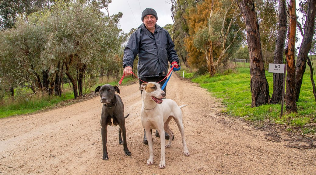 Hahndorf Shelter volunteer, Simon walks Lordy and Lulu. Simon and his wife have been dog walkers at the Shelter for five years.